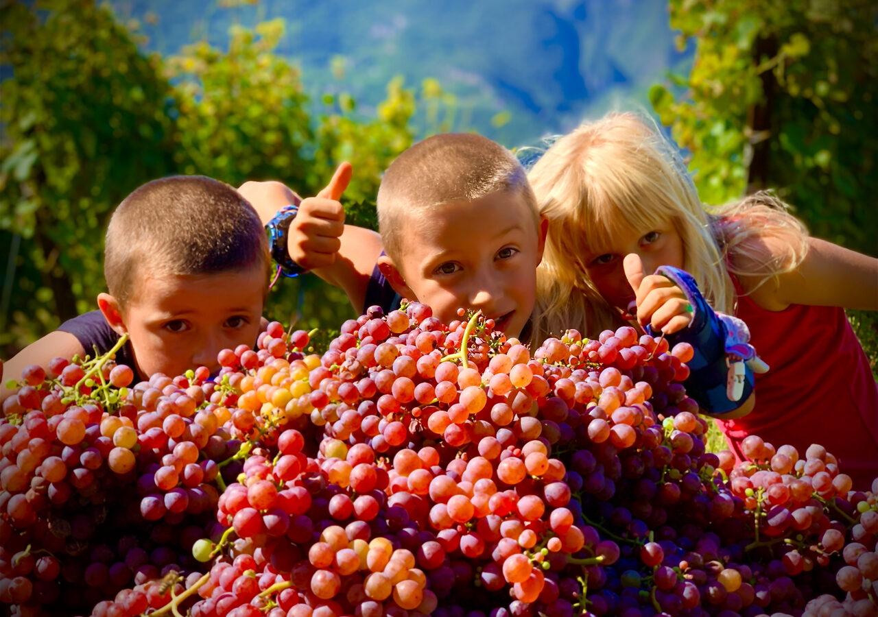 Agritur Maso Librar - Agriturismo a Trento